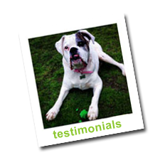 Walkies with Olivia Testimonials Page